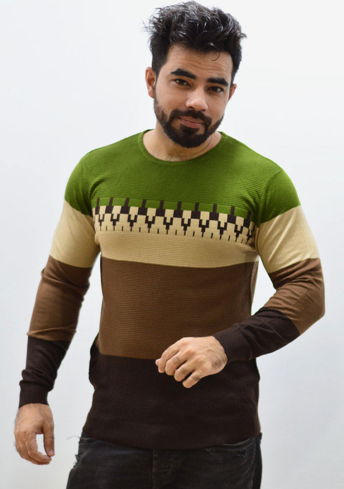 Round Neck Pattern Style Sweater